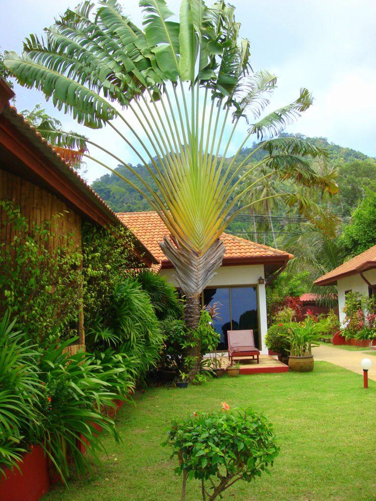 tajlandia_2009-424
