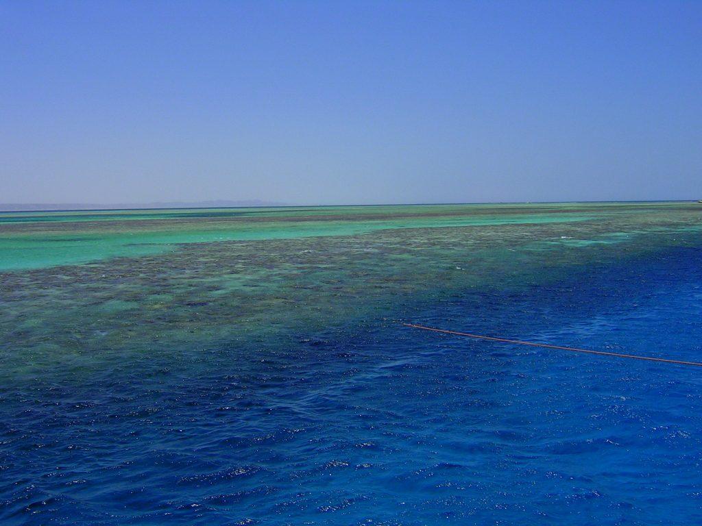 Ciepła i przejrzysta woda to podwodny raj.