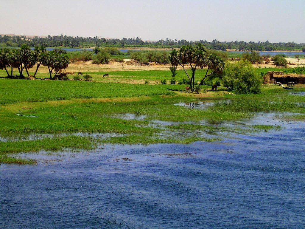 Delta Nilu